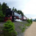 Brockenbahn direkt am Hexenstieg
