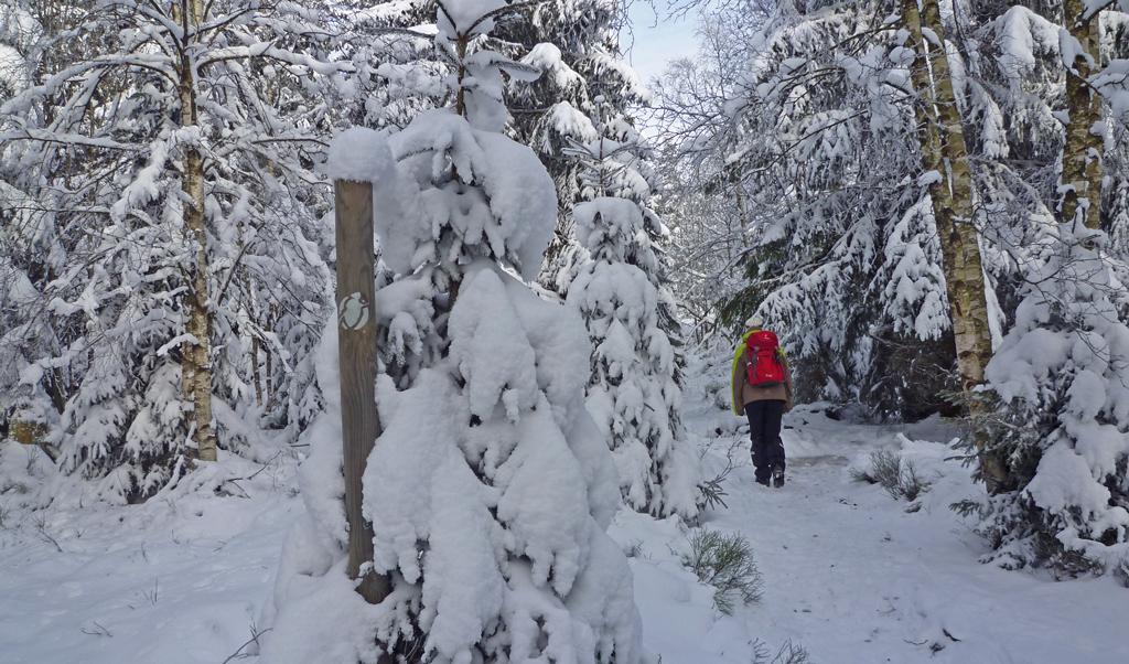 harzer-hexenstieg-im-winter