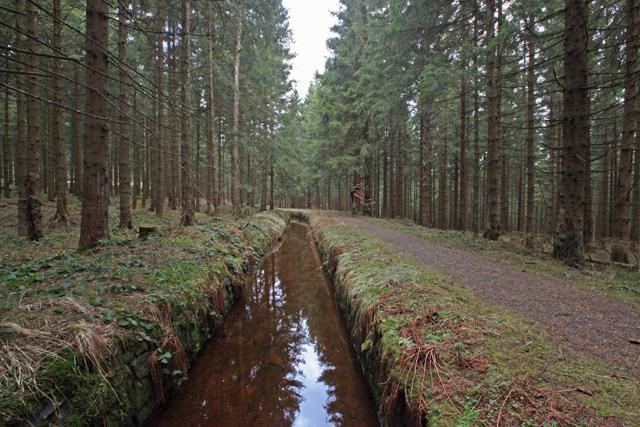 hexenstieg-alter-Dammgraben