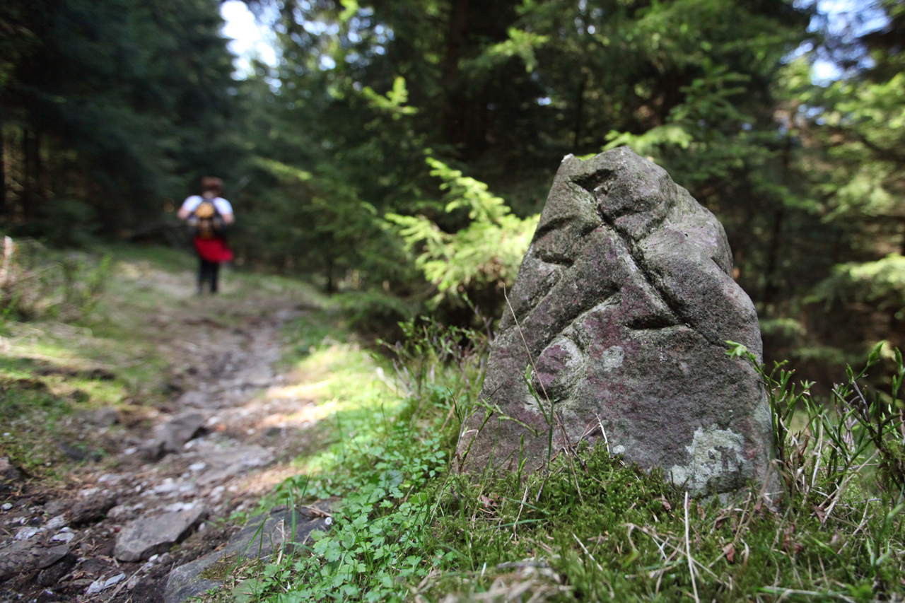 wandern-Harz