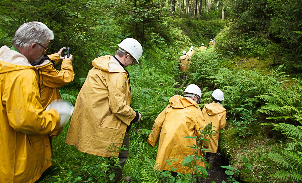 wasser-wandern im Harz