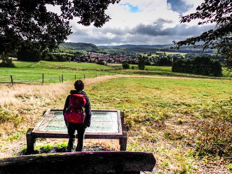steinway-trail wolfshagen