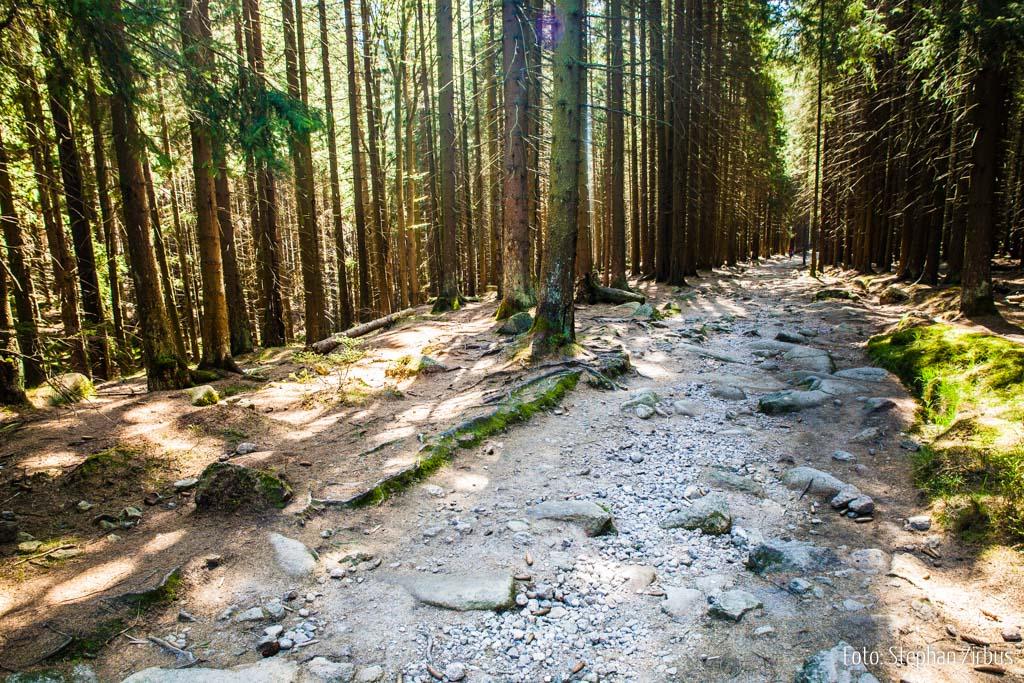 Wanderweg zum Brocken