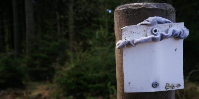 Hexenstieg | Zustand April 2020 | Dammhaus – Osterode